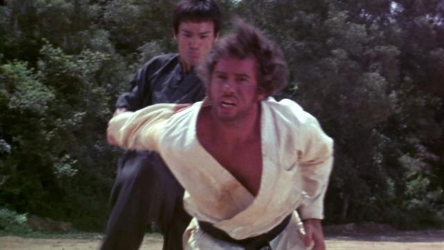 Bruce Lee: The Legend - Massive Success