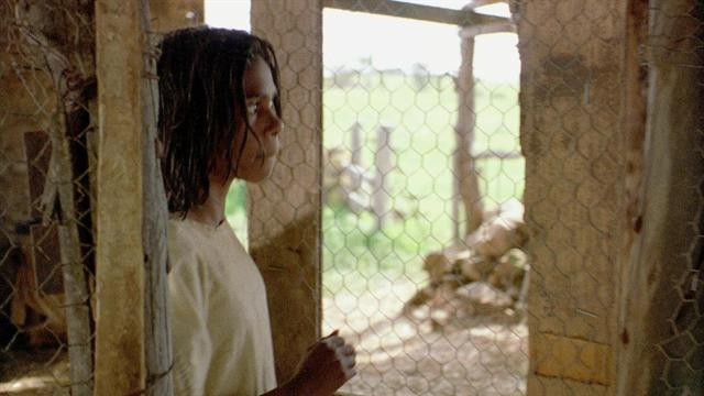 essay rabbit proof fence film Critical essay by larissa behrendt about follow the rabbit-proof fence by doris pilkington central to the film adaptation.